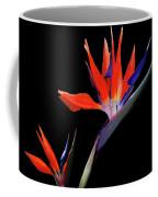 Heart  Of Paradise Coffee Mug by Teresa Epps