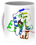 Heat Shock Protein 90 Coffee Mug by Ted Kinsman