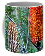 Heath Banksia From Fairfax Walk Coffee Mug