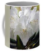 Heavenly Glimpse Coffee Mug