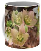 Heavenly Hellebores Coffee Mug
