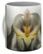 Heavenly Orchid Coffee Mug