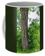 Heaven's Tree - Color Version Coffee Mug