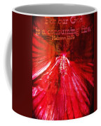Hebrews 12 29 Coffee Mug