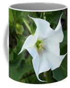 Hedgebind Coffee Mug
