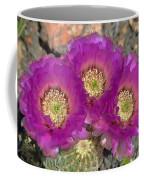 Hedgehog Cactus Triplets Coffee Mug