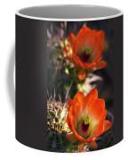Hedgehog Flowers In Dawn's Early Light  Coffee Mug