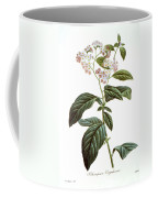Heliotrope Coffee Mug