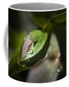 Helleborus Bud Coffee Mug