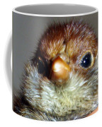 Hello Chick Coffee Mug