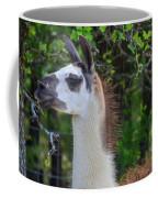 Hello Llama Coffee Mug