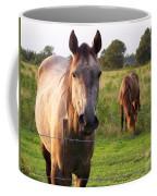 Hello Stranger Coffee Mug
