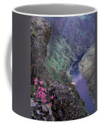 Hells Canyon Coffee Mug