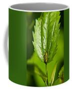 Hemiptroid Sucking Bug Coffee Mug