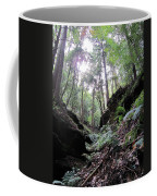 Hemlock Gorge Coffee Mug
