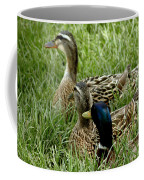 Hen Hen Drake At Frankenmuth On The Cass River Coffee Mug