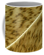 Hens Feather Coffee Mug