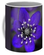 Hepatica 3 Coffee Mug