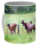 Herd Of Elk Leaping - Western Oregon Coffee Mug