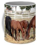 Herd Of Horses Ranch Scene Coffee Mug