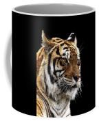 Here Kitty... Coffee Mug