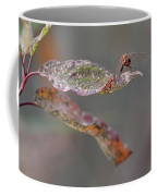 Here's Lookin' At You- Dragonfly Coffee Mug