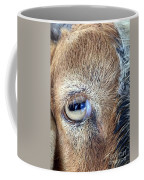 Here's Looking At You Kid - The Truth About Goats' Eyes Coffee Mug
