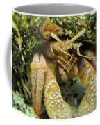Hermit Crab Coffee Mug