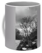 Hermit Island Tree 0912 Coffee Mug
