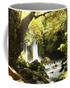 Hermon Stream Nature Reserve Banias Coffee Mug