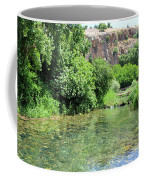 Hermon Stream Nature Reserve Coffee Mug