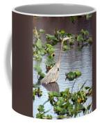 Heron Fishing In The Everglades Coffee Mug