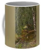 Heron On Path #g7 Coffee Mug