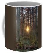 Heron Pond Sunrise Coffee Mug by Steve Gadomski