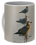 Herring Gull  Coffee Mug