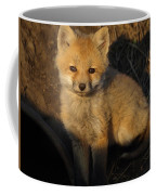 Here's Looking At You, Kit. Coffee Mug