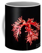 Hibiscus 1 Coffee Mug
