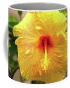 Hibiscus Flower After The Rain Coffee Mug