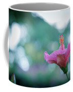 Hibiscus Flower In A Garden Coffee Mug
