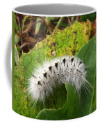 Hickory Tussock Coffee Mug