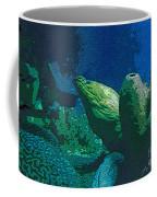 Hidden Eel Coffee Mug