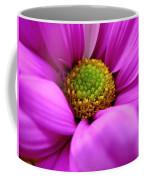 Hidden Inside Coffee Mug