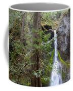 Hidden Rainforest Treasure Coffee Mug