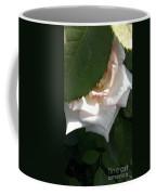 Hidden Rose Coffee Mug