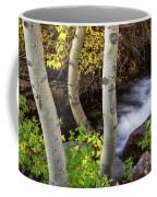 Hidden Stream Coffee Mug