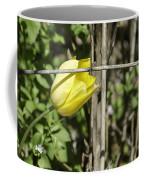 Hidden Yellow Tulip 02 Coffee Mug