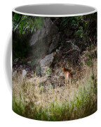 Hiding Behind A Twig Coffee Mug