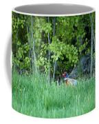 Hiding In The Grass. Pheasant Coffee Mug
