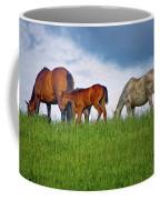High Browsers Coffee Mug