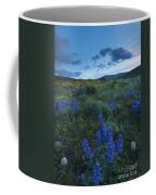 High Desert Dusk Coffee Mug